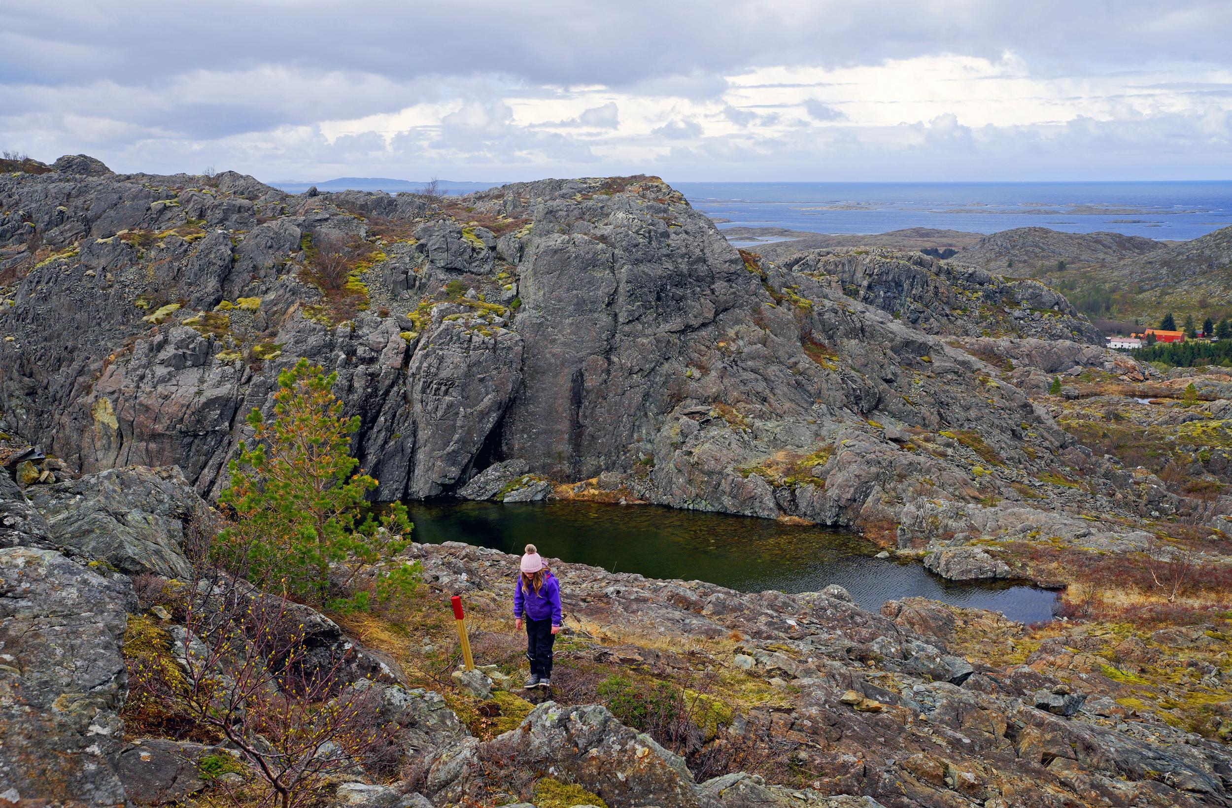 Lekamøya